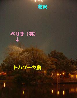 04トム島水まき中b.jpg
