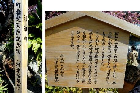 16原木の看板.jpg