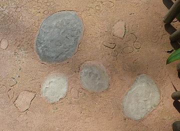 24CC地面に埋まっているレキ.jpg