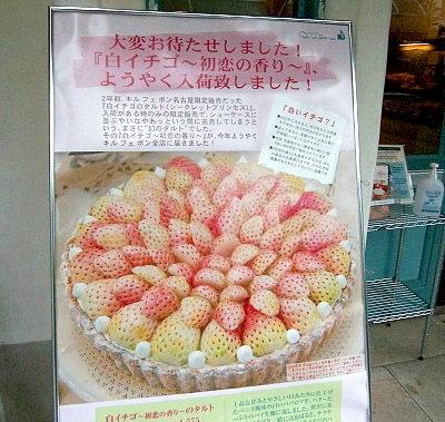 白イチゴの看板♪.jpg